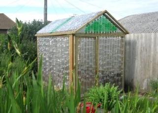 bottle-greenhouse