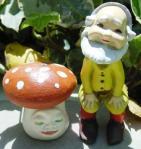 miniature-mushroom-face